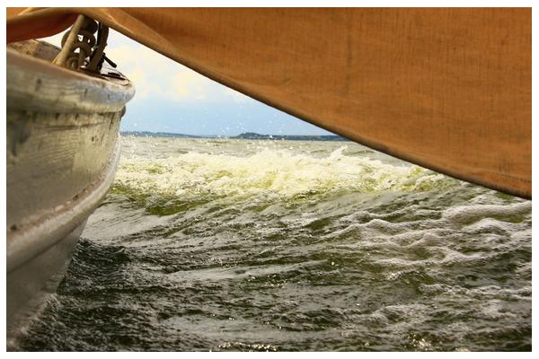 Регата, паруса, волны